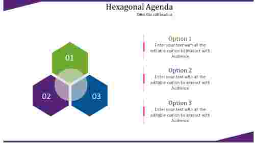 Hexagonal agenda slide template powerpoint
