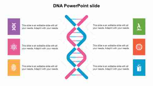 DNA PowerPoint slide