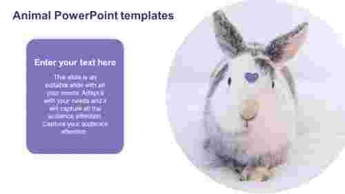 Animal%20PowerPoint%20templates%20designs