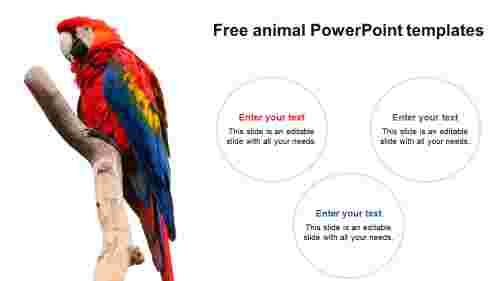Attractive%20Free%20Animal%20PowerPoint%20Templates%20Designs
