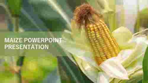 FARMING%20MAIZE%20POWERPOINT%20PRESENTATION%20TEMPLATE