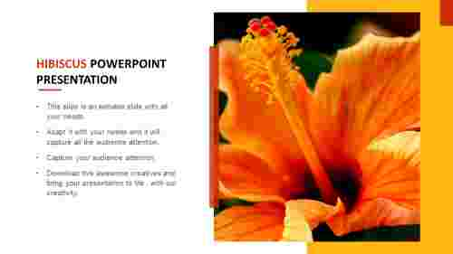 Download%20attractive%20Hibiscus%20PowerPoint%20presentation