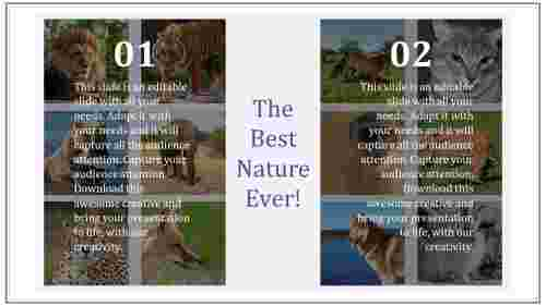 nature%20presentation%20templates%20with%20animal%20pictures