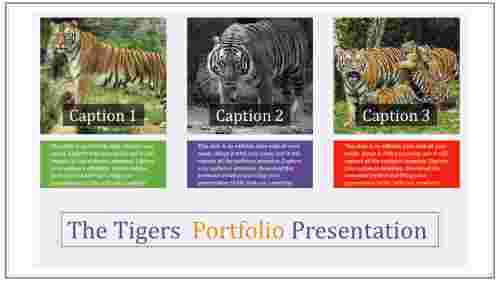 portfolio assessment powerpoint presentation