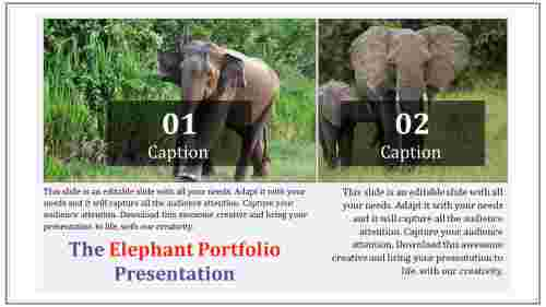 portfolio management powerpoint presentation