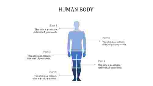 A five noded human body powerpoint template