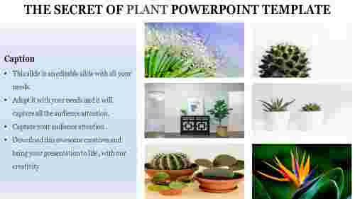 plant powerpoint template-The Secret of PLANT POWERPOINT TEMPLATE