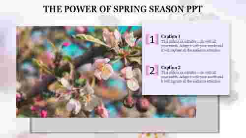 spring%20season%20PPT%20templates