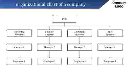Hierarchy organizational chart of a company