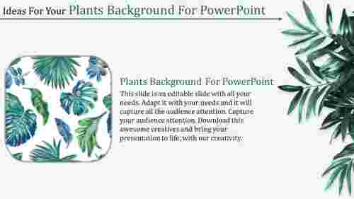 green plants background for powerpoint