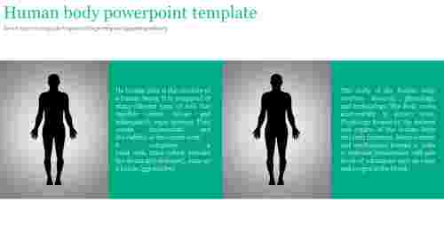 A two noded human body powerpoint template