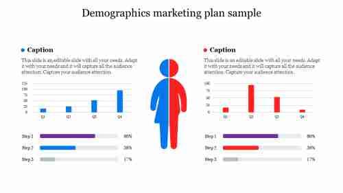 demographics%20marketing%20plan%20sample