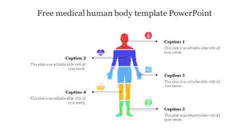 Colorful Free medical human body template PowerPoint