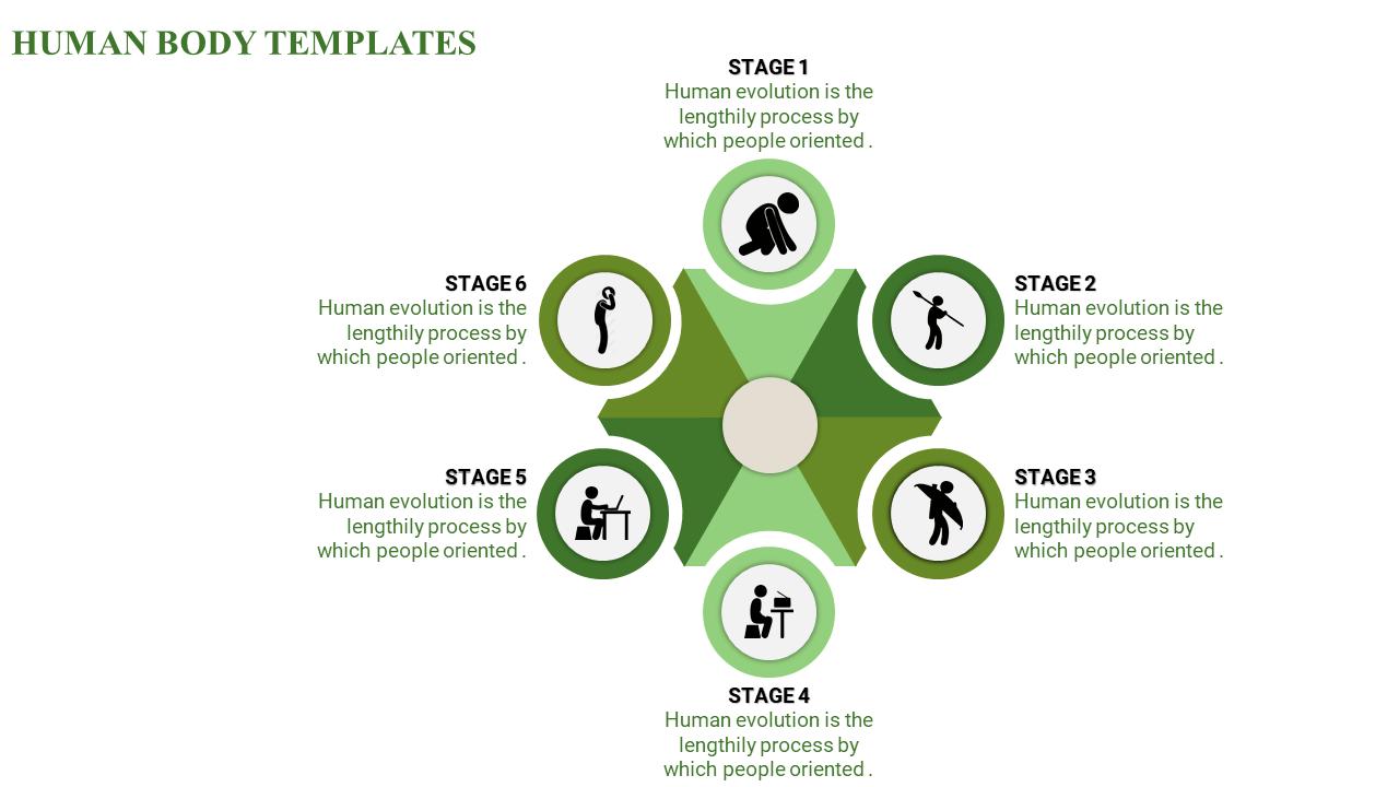 Human Body Powerpoint Template Circular Pie Model Slideegg