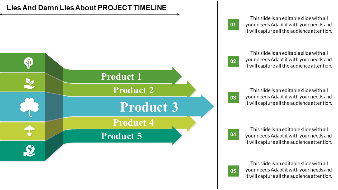 Process Project Timeline Powerpoint