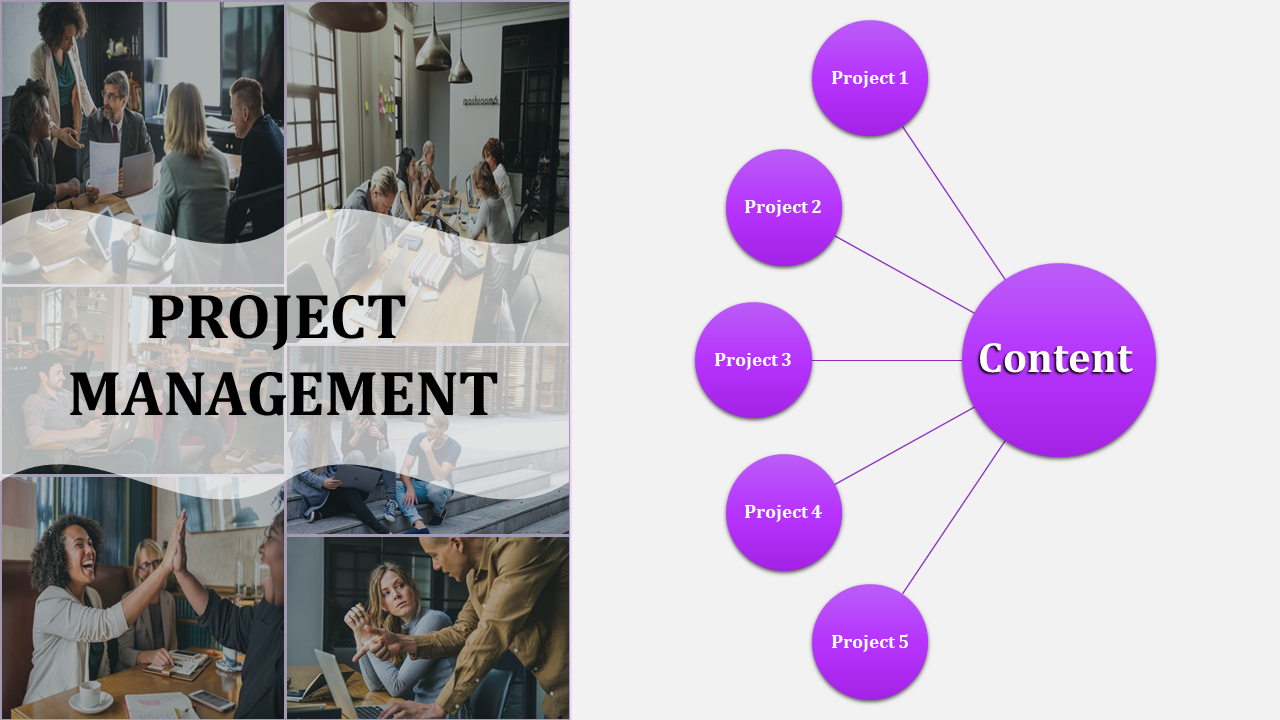 Portpolio Best Project Management Powerpoint Template