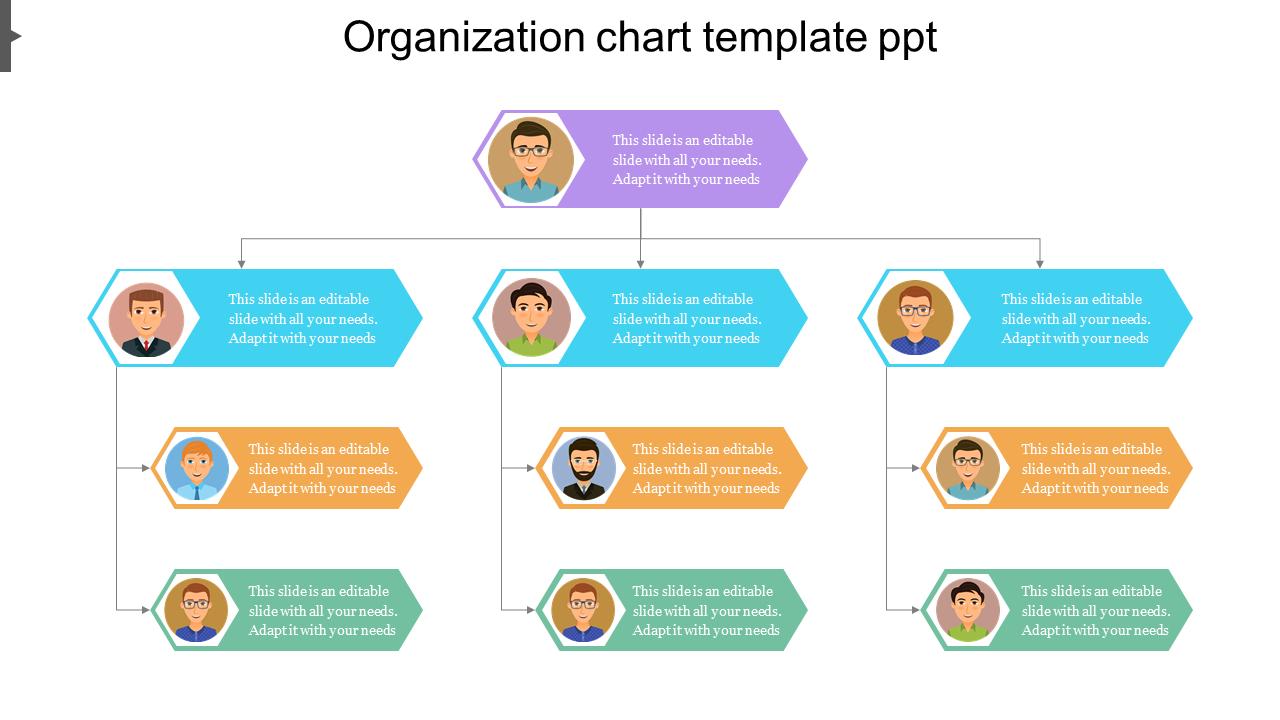 Hexagonal Model Organization Chart Template PPT