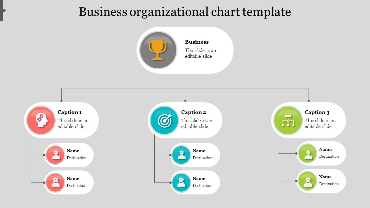 Best Business Organizational Chart Template PowerPoint