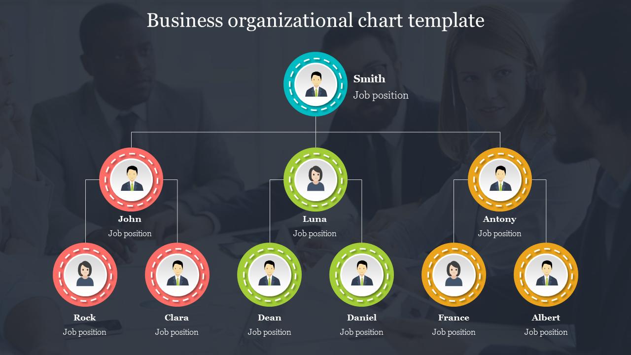 Best Business Organizational Chart Template