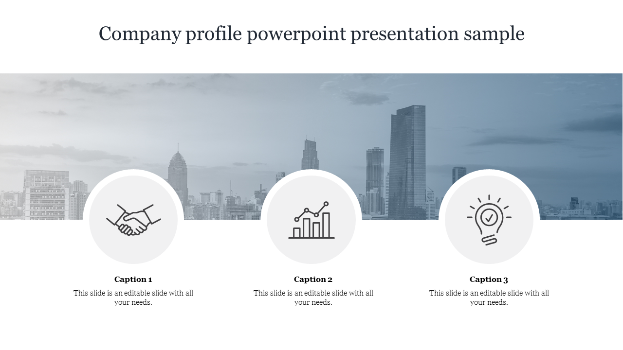 Company Profile Powerpoint Presentation Sample Template